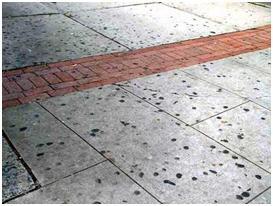 Sidewalk  Full of Gum