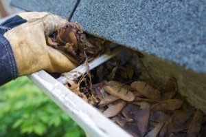 Why Cleaning Gutters is Critical to the Health of Your Property