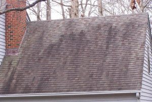 Fayetteville, NC Roof Cleaning Services